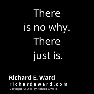 There is no why. There just is. by Richard E. Ward