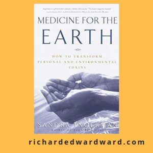 Medicine for the Earth by Sandra Ingerman book cover