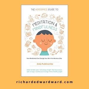 The Headspace Guide to Mindfulness & Meditation by Andy Puddicombe